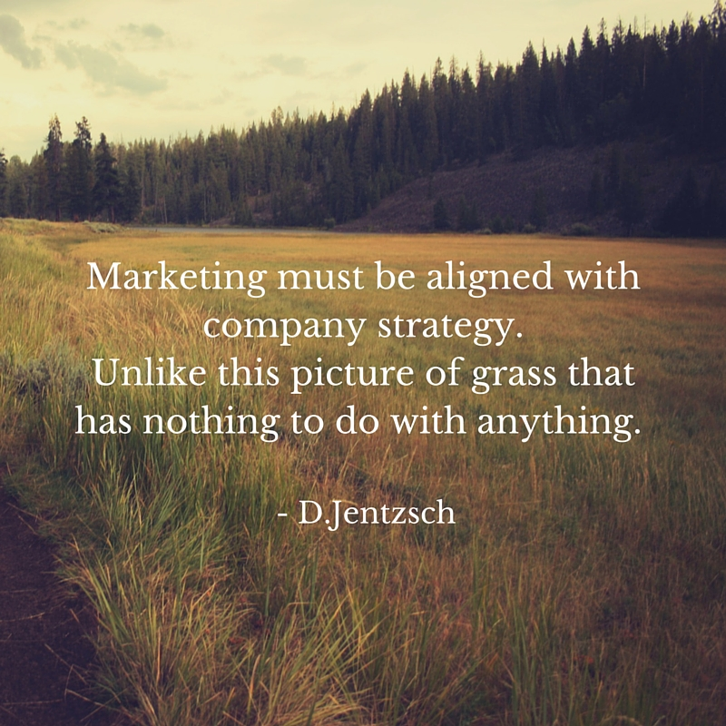 Marketing must be aligned with your company strategy. Unlike this picture of grass and weeds that has nothing to do with marketing.
